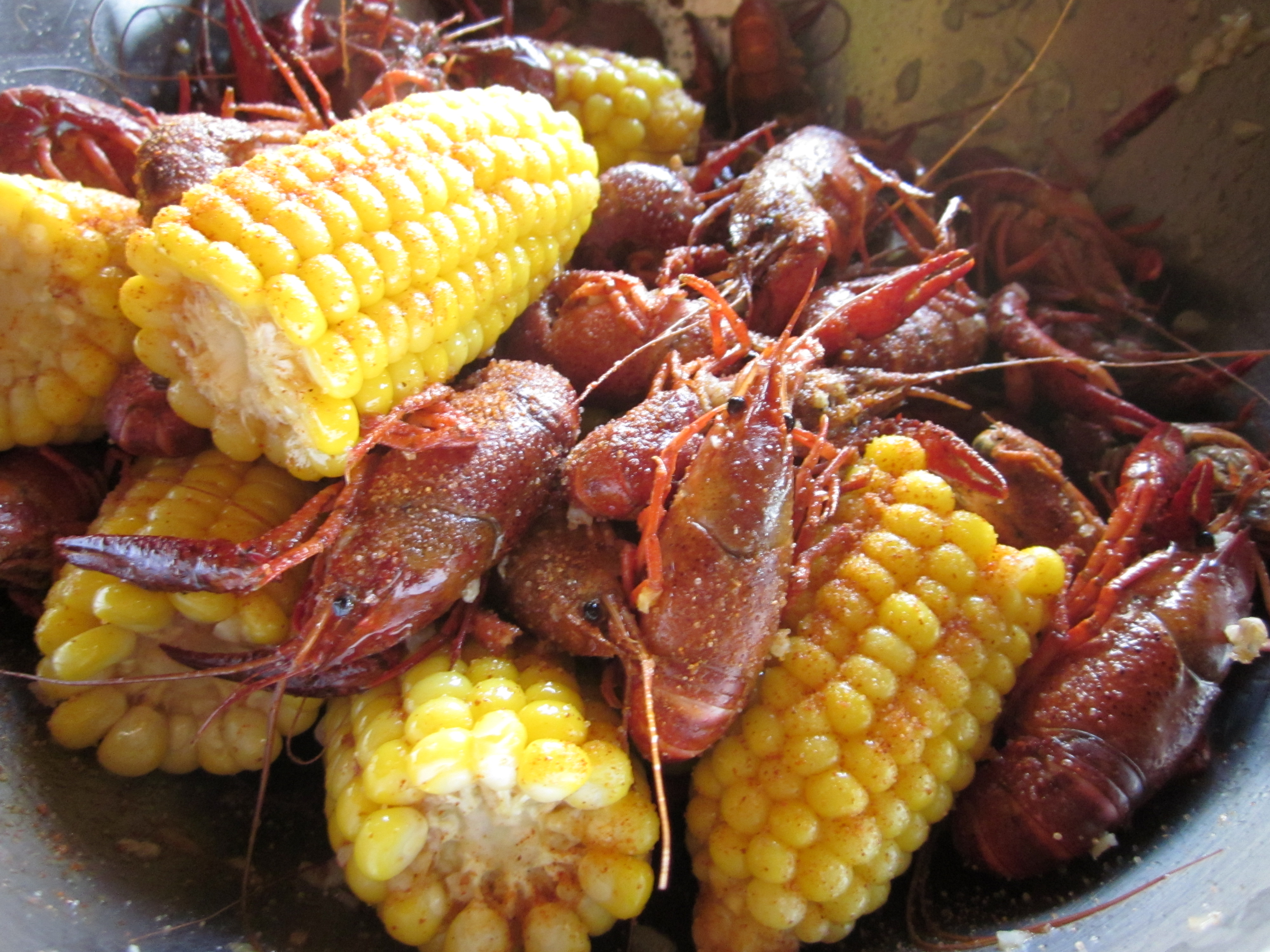 The First Thing You Need To Do With Your Live Crawfish Is To Pour It Into A  Large Tub, Bucket, Whatever Container Is Large Enough To Clean Your Crawfish  In