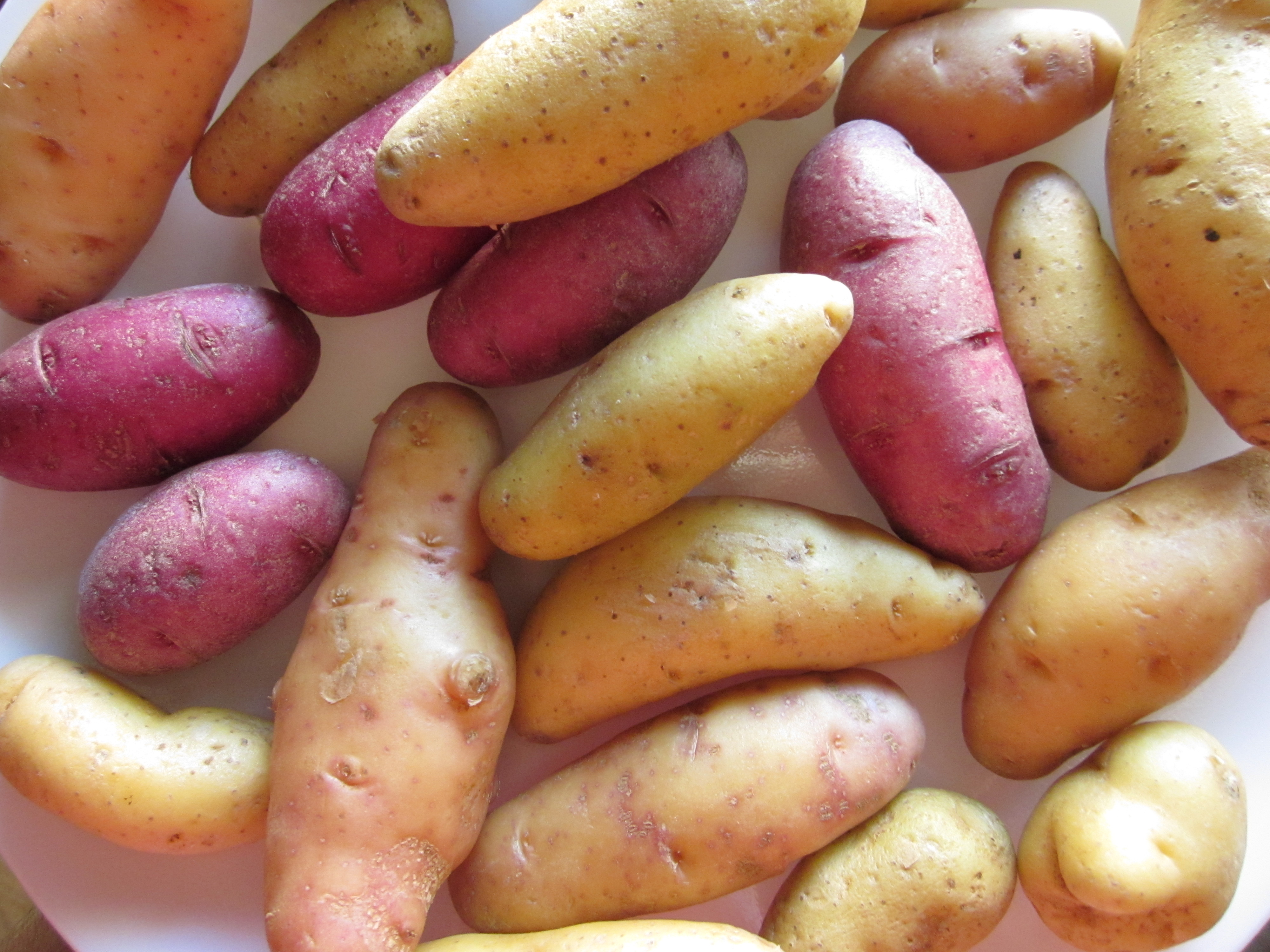 As for me, what restores back the goodness in my world is if I have roasted  vegetables that are caramelized and flavorful. Butternut squash when tossed  with ...